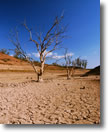 image of drought