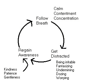 the cycle of awareness