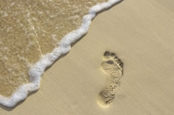 Walking meditation - footprints on beach