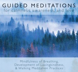 If you're interested in Buddhism and meditation, we have guided meditation MP3s in our online store.