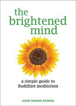 The Brightened Mind