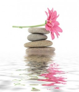 balance spa stones with flowers