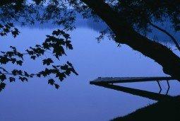 Lake and trees at dusk