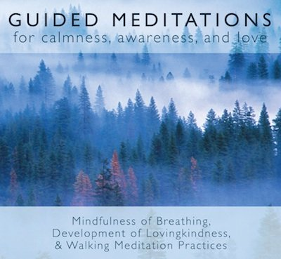 If you like my articles,  please click here to check out my books,  guided meditation CDs, and MP3s.