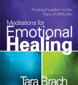 Check out Emotional Healing and other titles by Tara Brach.
