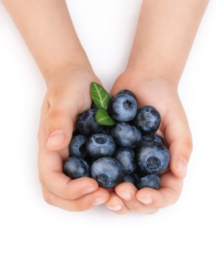 Girls hands holding ripe blueberries
