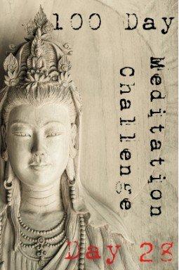 100 day meditation challenge 028