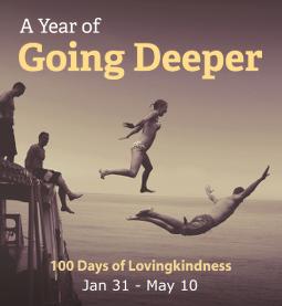 YOGD-100days