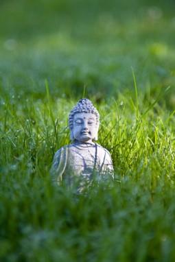 Buddha Meditation auf der grünen Wiese