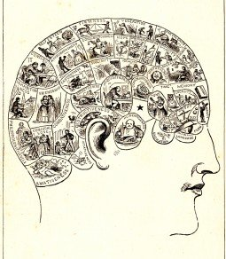 Phrenology Head diagram