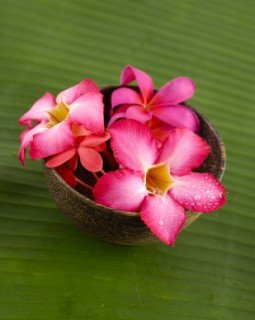 Three red frangipani in bowl and banana leaf texture