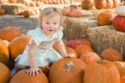 Baby Girl Holding a Pumpkin