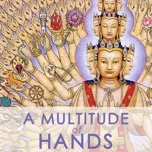 MULTITUDE OF HANDS