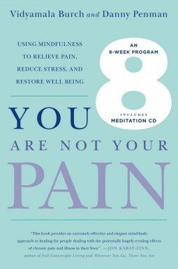 You Are Not Your Pain Vidyamala Burch