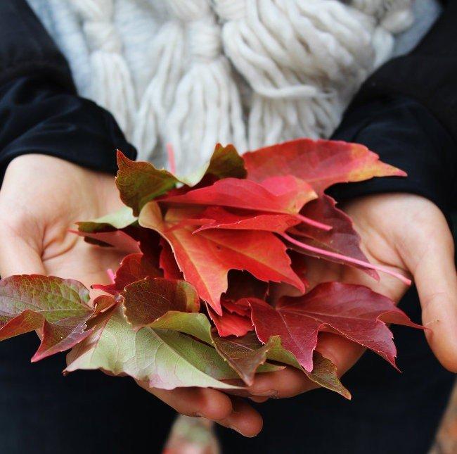 living with appreciation and gratitude