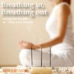 Meditation MP3