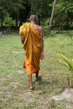 walking meditation - monk walking
