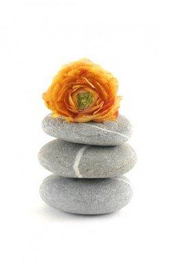 Stacked of zen stones with orange ranunculus flower