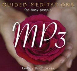 If you like our articles and want to support the work we do,  please click here to check out our books,  guided meditation CDs, and MP3s.