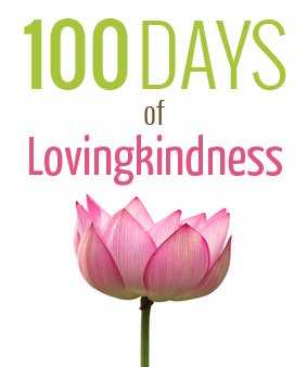 100 Days of Lovingkindness