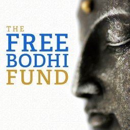 Free Bodhi project