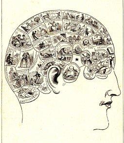 Phrenology Head diagram